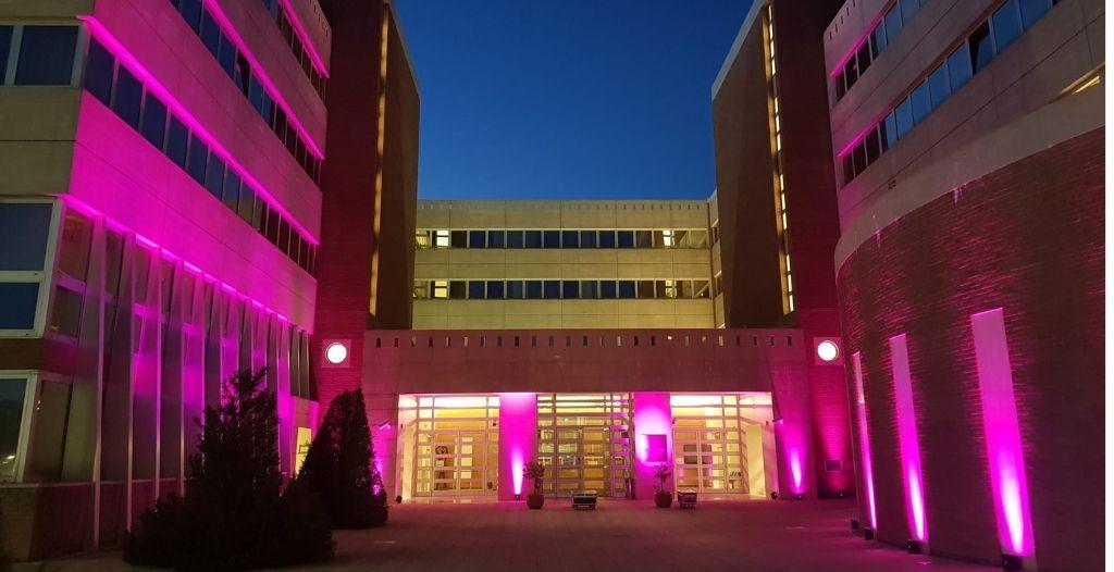 """Cicala """"Il Consiglio regionale della Basilicata aderisce alla campagna Nastro rosa"""""""